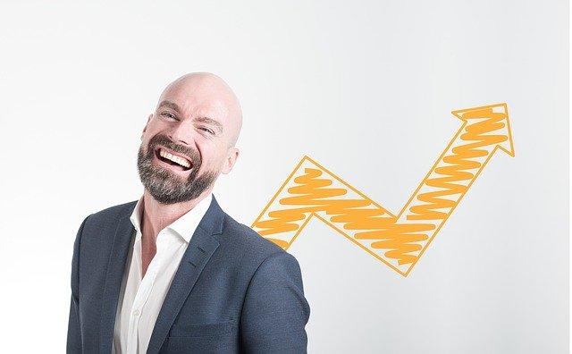 Hvad tjener en økonom?